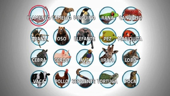 nombres animales