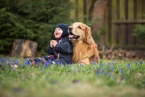 El mejor perro para un niño