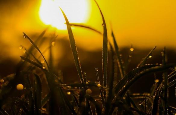 iluminacion de exteriores